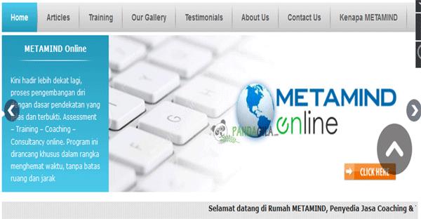 Metamind, startup, kecerdasan buatan