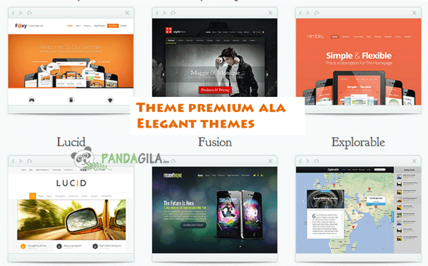 desain website, theme WordPress, theme premium, elegant themes