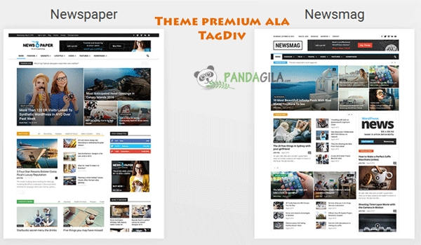 desain website, theme WordPress, theme premium, TagDiv