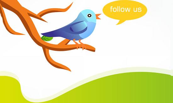 follower,twitter,social media,pengikut,fans