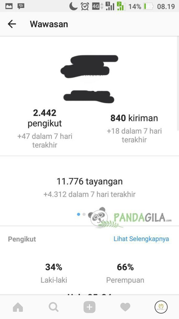 Membaca Insight Instagram