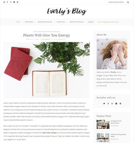 Everly Lite- Theme WordPress Gratis Responsif