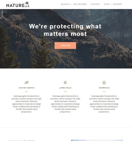Naturelle- Theme WordPress Gratis Responsif