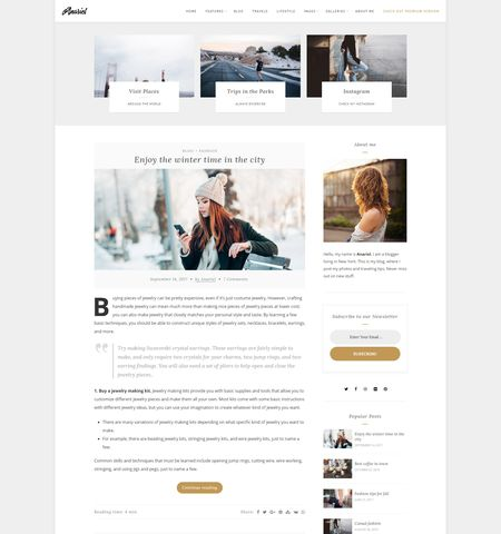 Anariel Lite- Theme WordPress Gratis Responsif