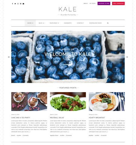 Kale- Theme WordPress Gratis Responsif