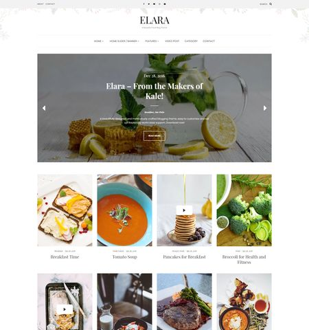 Elara- Theme WordPress Gratis Responsif