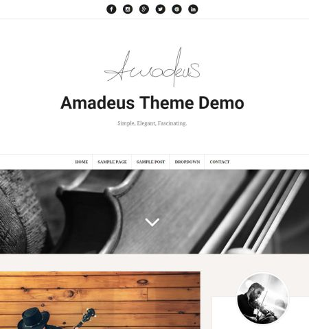 Amadeus- Theme WordPress Gratis Responsif