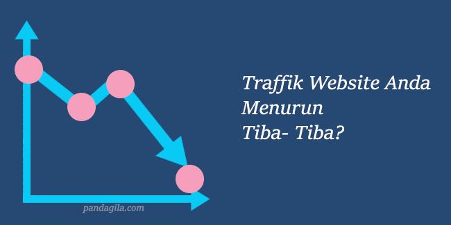 Trafik Website Atau Blog Anda Menurun Tiba-Tiba? Mungkin Ini Penyebabnya